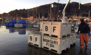 Building Garibaldi's Local Seafood Economy