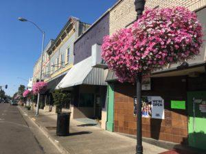 Main Street Economic Vitality Hub Workshop Series