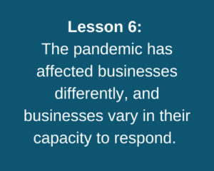 Lesson 6: The pandemic has affected businesses differently, and businesses vary in their capacity to respond.